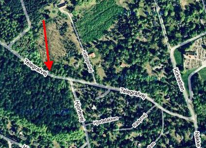 Bilist dræbt mod vejtræ i rørvig